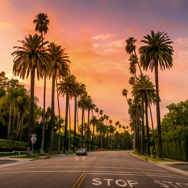 I love Beverly Hills because there are no cars on the side of the streets and the palm trees give you an incredible leading line, Photo © 2018 Serge Ramelli. All rights reserved. www.photoserge.com
