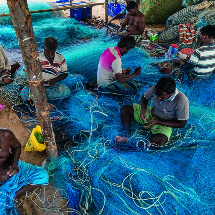 Blue Nets, Tamil Fishermen, Pulicat, South India, July 2016, Photo © 2018 Cristina Mittermeier. All rights reserved. www.sealegacy.org