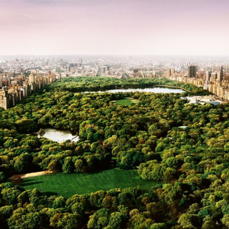 © David Drebin Collectors Edition - 50, to be published by teNeues in October 2020, www.teneues.com, DREAMS OF CENTRAL PARK, 2006, Photo © David Drebin. All rights reserved.